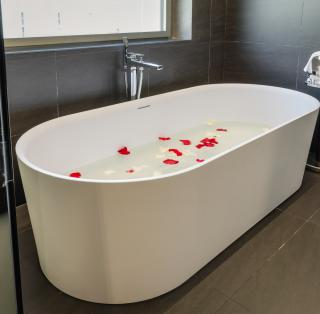 Bathtub at the Hotel Metropolis
